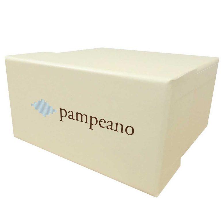 PAMPEANO Polo Belt Gift Box